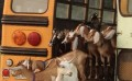 """Polly Ann Trail will see """"goatscaping"""" in near future"""