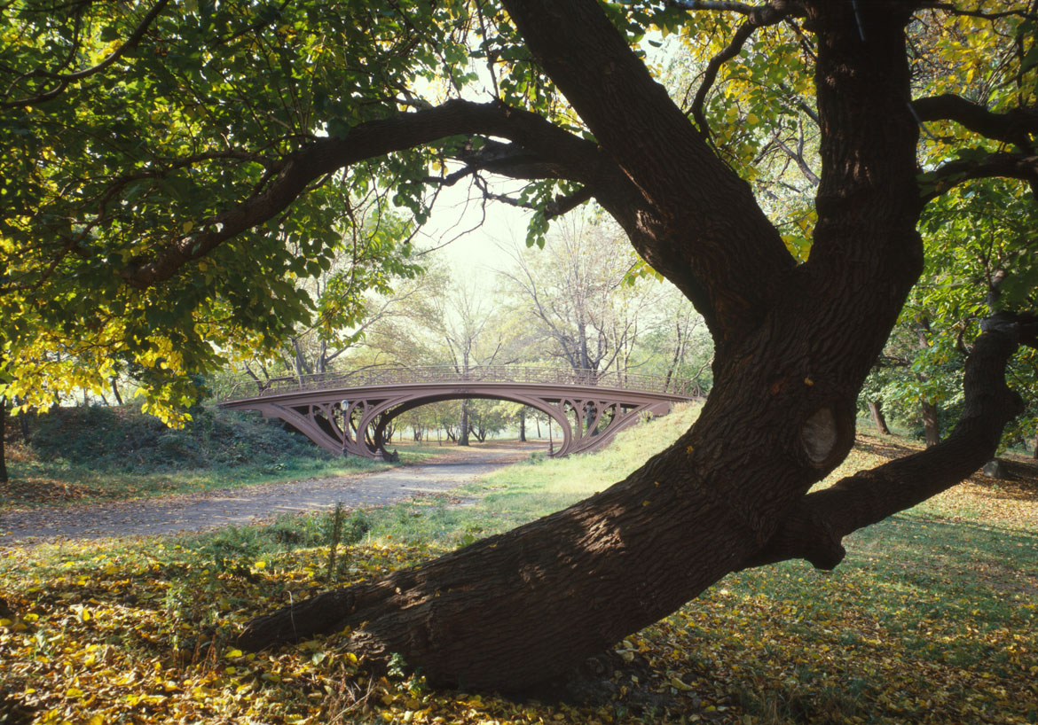 Central_Park_New_York_City_New_York_23_cropped2[1]