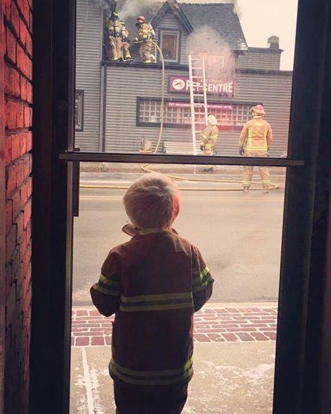 Fire ravages historic LO Pet Centre building