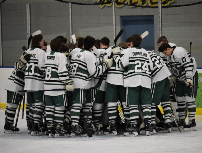Lake Orion Dragons hockey advance to regional finals