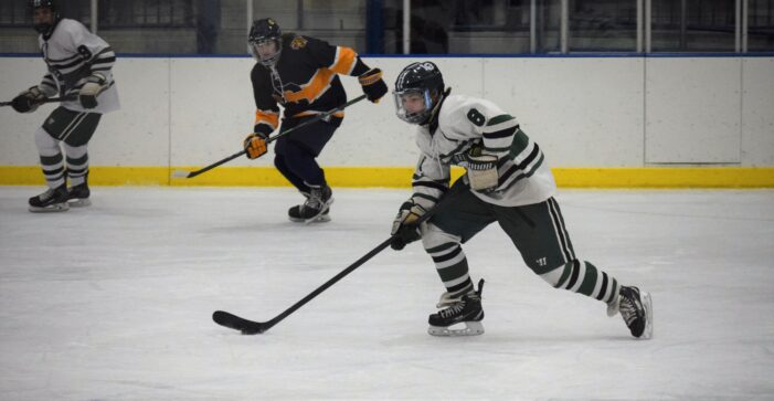 Dragon hockey team wins Regional Championship, moves on to D1 state quarterfinals