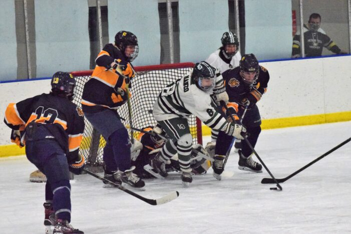 Dragon hockey team to face Macomb Dakota in Regional Semifinals on Thursday