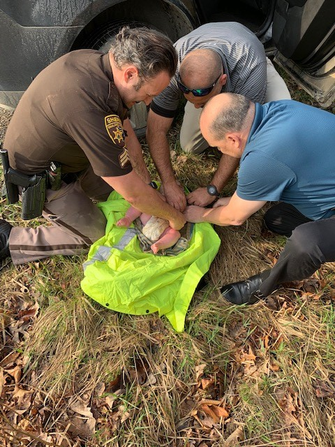 Deputies rescue a 4-month-old baby apparently abandoned by his mother near a creek in Orion Twp.