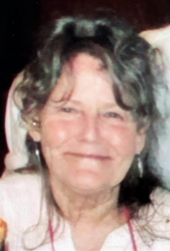 Bonnie Van Wagoner, 70, of Lake Orion