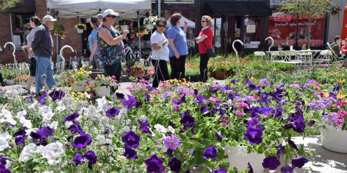20th annual Flower & Art Fair returns to downtown LO after a year hiatus